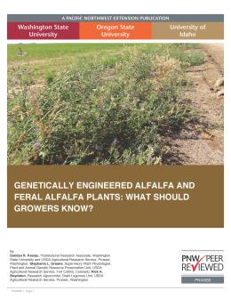 "Cover image of ""Genetically Engineered Alfalfa and Feral Alfalfa Plants: What Should Growers Know?"""