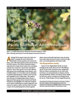 "Cover image of ""Megachilid Bees in the Pacific Northwest: An Introduction"" publication"