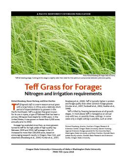 Teff Grass for Forage: Nitrogen and irrigation requirements