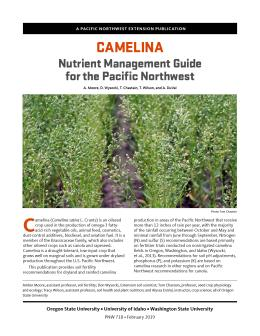 """Cover image of """"Camelina Nutrient Management Guide for the Pacific Northwest"""""""